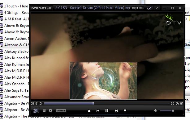 Окно программы при просмотре видео